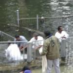 Jordan River pilgrims baptism picture