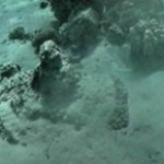 Coral-encrusted chariot wheel, filmed off the Saudi coastline, matches chariot wheels found in Tutankhamen\'s tomb