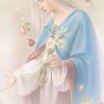 virgin-mary-0502