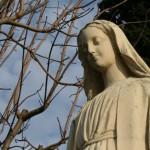 Virgin mary statue 0507