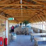 Working Replica of Noah\'s Ark, Holland 07