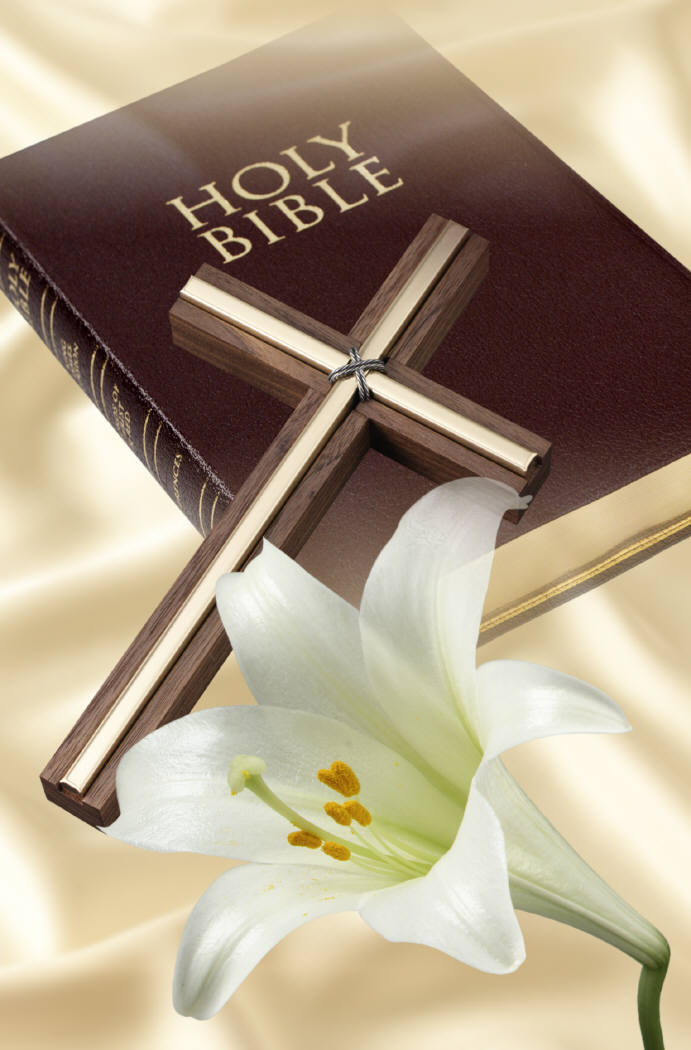 cross and the bible - photo #7