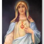 Virgin mary 0602 Immaculate Heart