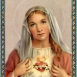 Virgin mary 0706