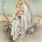 Virgin Mary Pics 0918