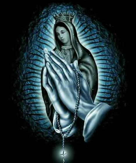 Virgin Mary Pics are given above. Just take a look at each one and