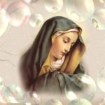 Virgin Mary Pics 1120