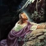 Life of Jesus Pic 12