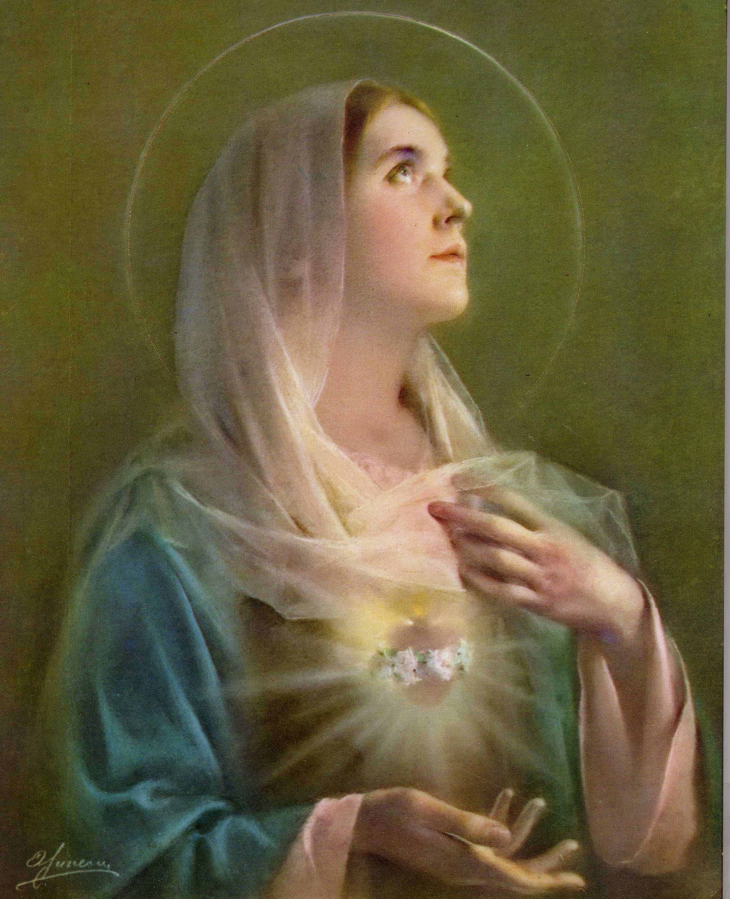 the holy virgin mother mary Who was the virgin mary was she the mother of god as is the case with jesus christ himself who is the virgin mary by acharya s/dm murdock the following article is excerpted from: who asserted that mary's parents were filled and purified by the holy ghost.