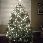 Christmas Tree Pics 0107