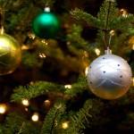 Christmas Tree Pics 0112