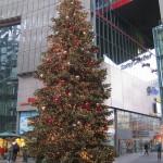 Christmas Tree Pics 0117