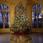 Christmas Tree Pics 0121