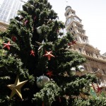 Christmas Tree Pics 0201