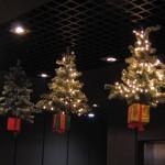 Christmas Tree Pics 0205