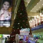 Christmas Tree Pics 0206