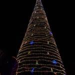 Christmas Tree Pics 0207