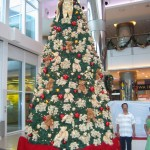 Christmas Tree Pics 0208