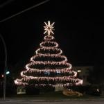 Christmas Tree Pics 0210