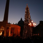 Christmas Tree Pics 0211