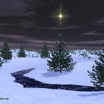 Christmas Tree Pics 0214