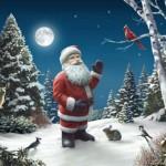 Santa Claus Pics 0106