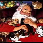 Santa Claus Pics 0107