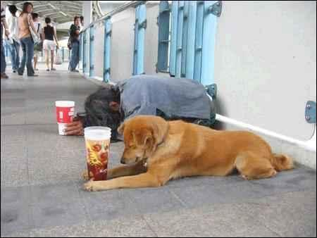 The Beggar and His Dog
