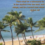 Scenic Wallpapers with Bible Verses 04