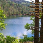 Scenic Wallpapers with Bible Verses 47