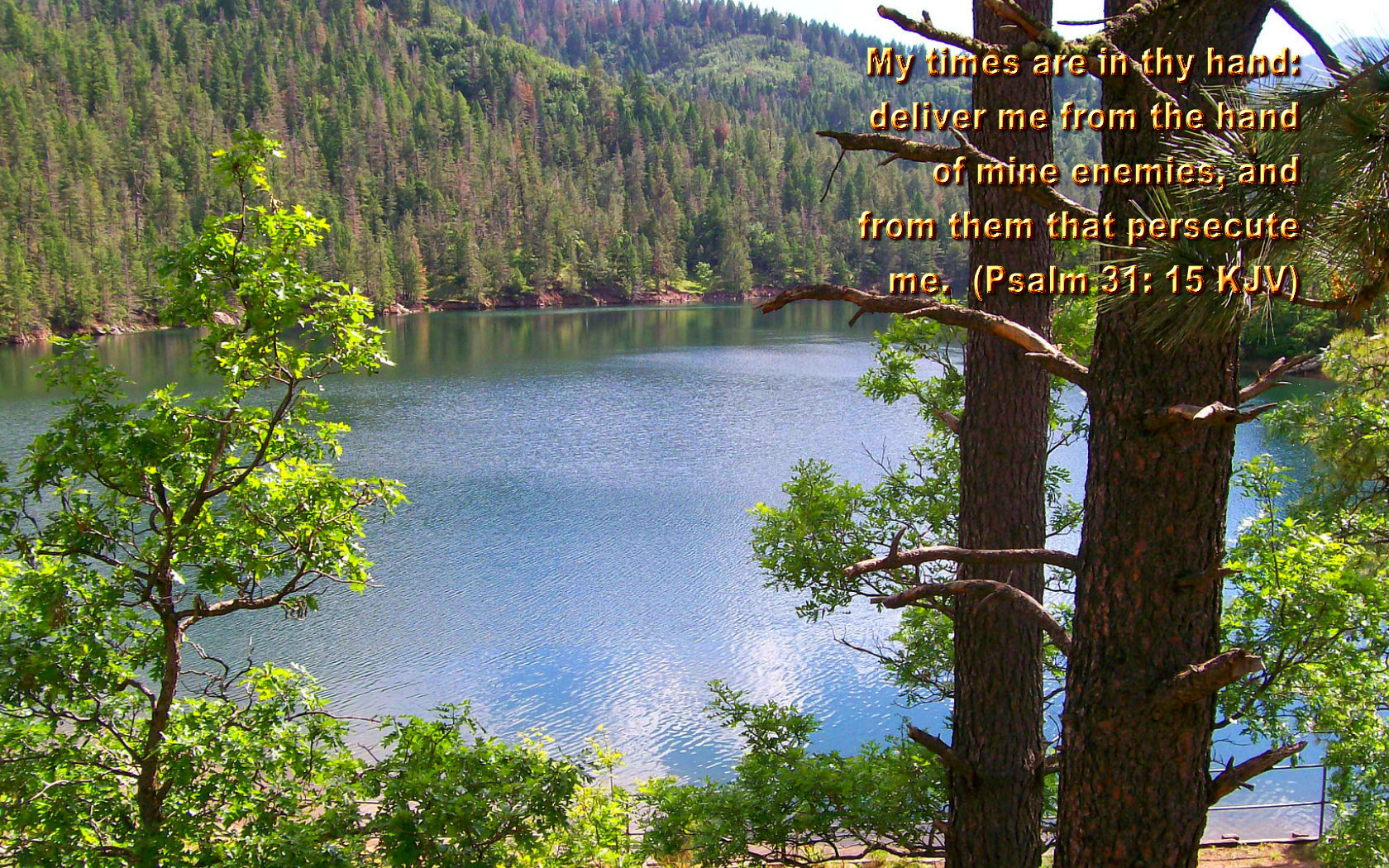 scenic wallpapers bible - photo #23