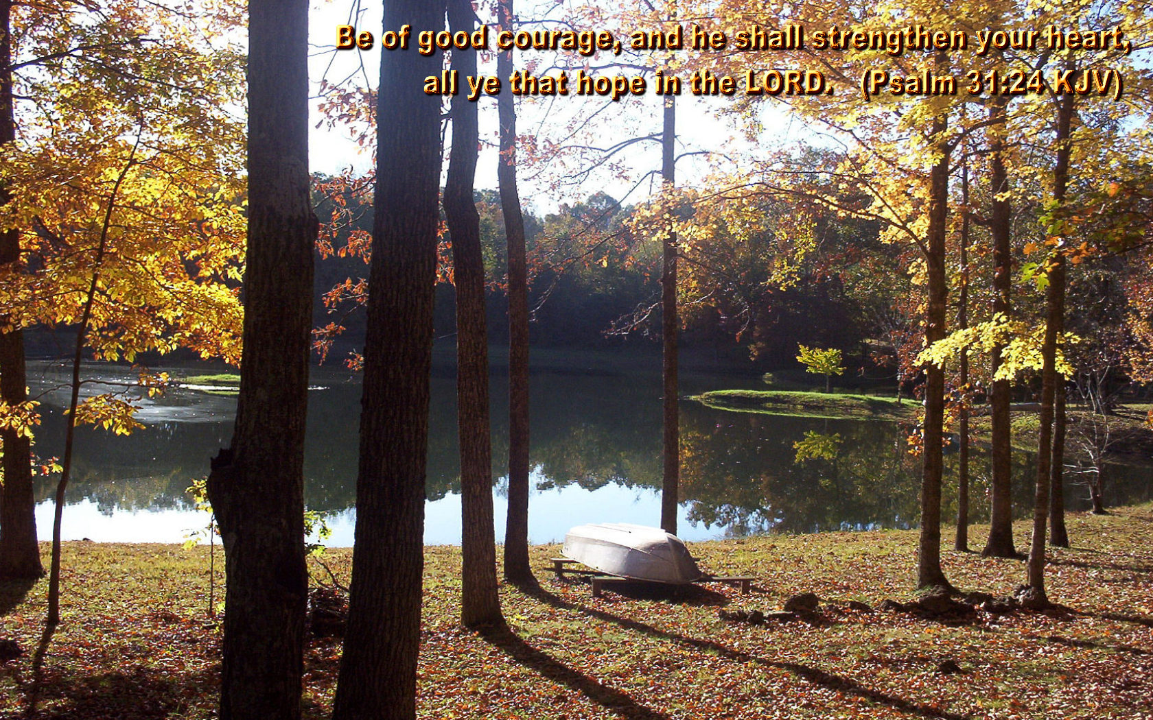 scenic wallpapers bible - photo #34