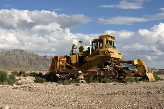 bulldozer feeding birds