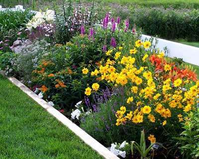 Gardening God\'s Way
