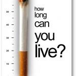 Dont Smoke 17