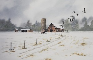 Geese and Barn