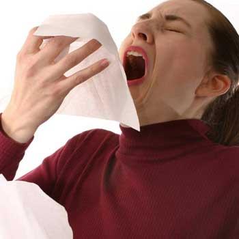 the sneeze