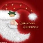 Christmas Cards 0113