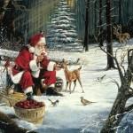 Santa Claus Pic 0311