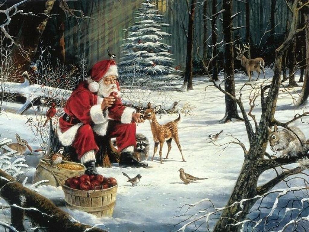 Красивые фото животных и снега