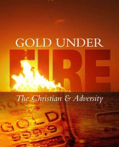 Like gold is tested in fire