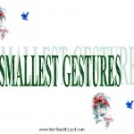 Smallest Gestures PPT 01