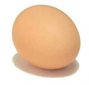 egg or carrot