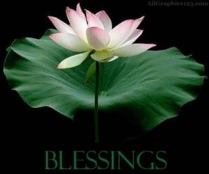 Blessings hundred fold