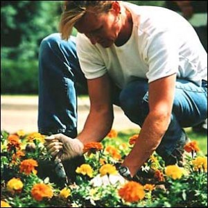 Gardener mixes right soil