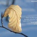 Beautiful Quotes 02