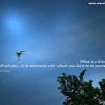 Beautiful Quotes 05