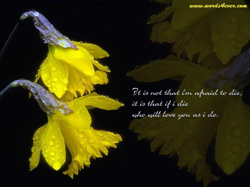Beautiful Quotes 06