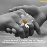 Beautiful Quotes 11