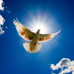 Holy Spirit Dove flying